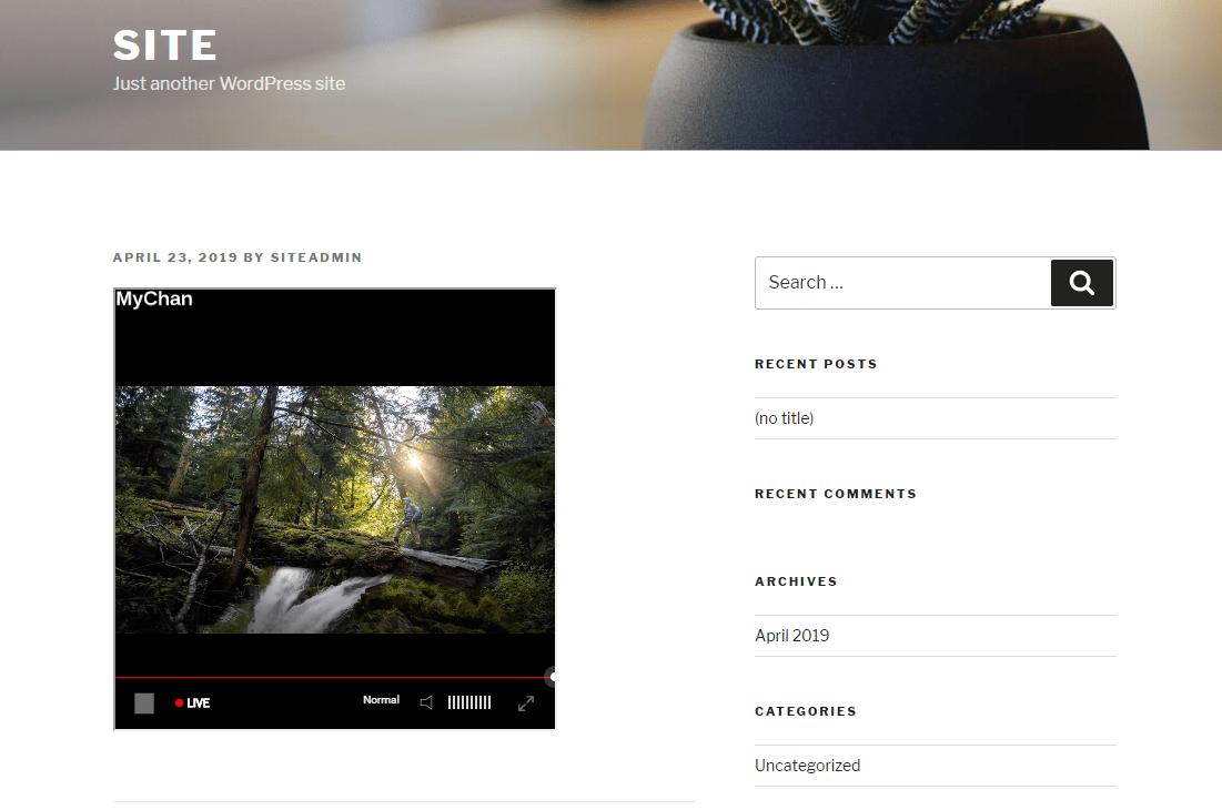 streaming on WordPress websites